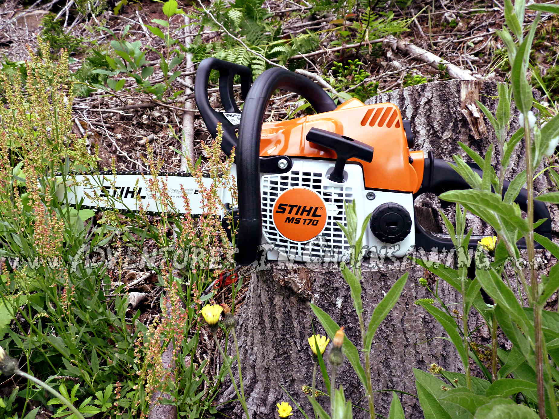 Photo by A.J. Kilpatrick for the best chainsaw blog.