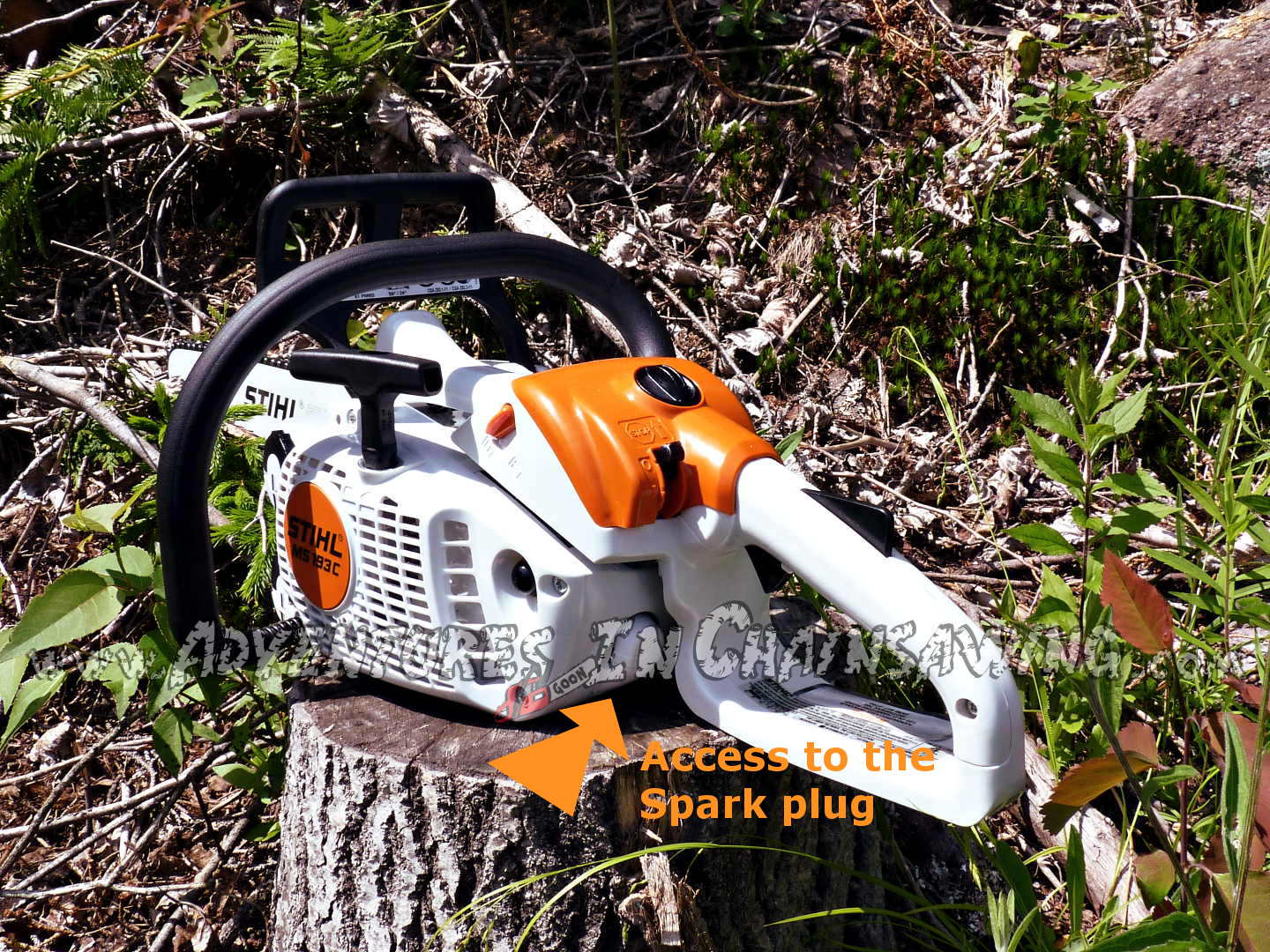 The adventure continues on the best chainsaw blog.