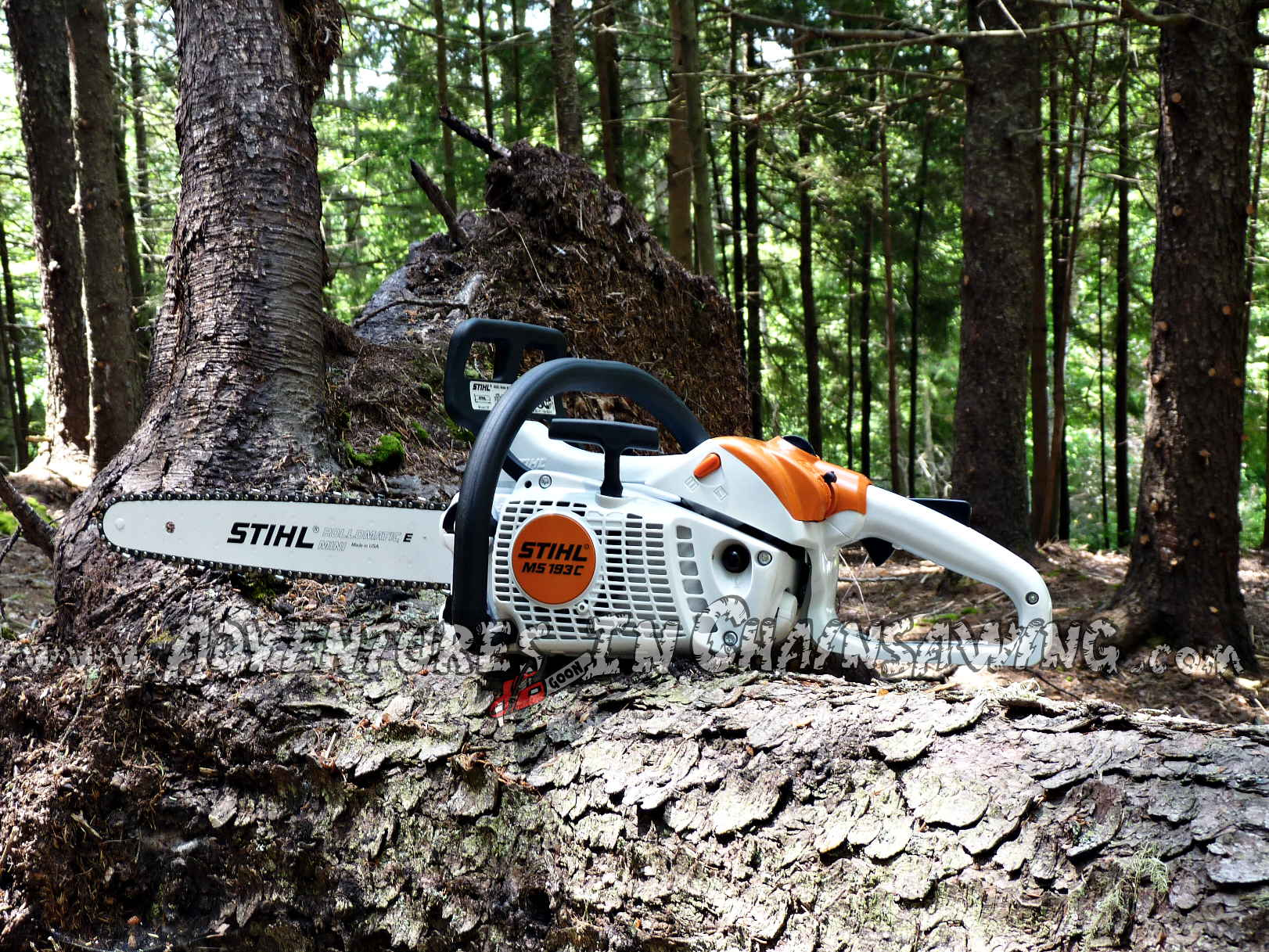 Another review from the world's best chainsaw blog!